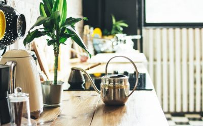The Easy Guide to an Eco Friendly Kitchen (9 Tips)